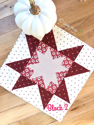 Moda Stitch Pink Block 2 and Fall Decorating