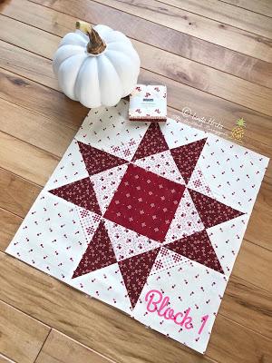 Moda Stitch Pink – Block 1